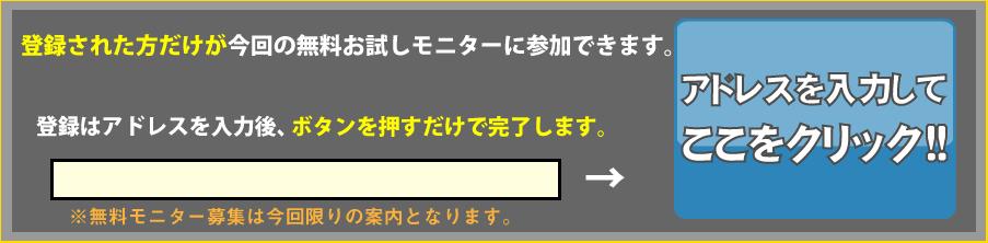競馬マニュアルお試し_登録フォーム