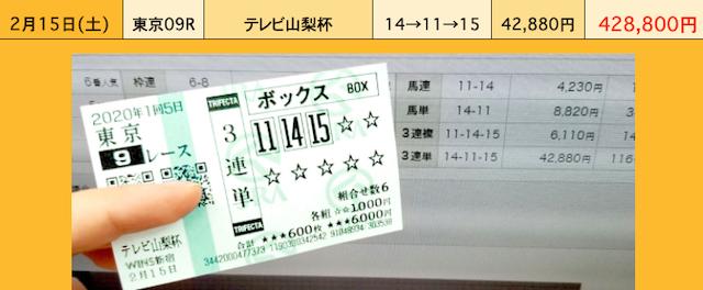 日本一競馬で稼げた買い目 的中実績について
