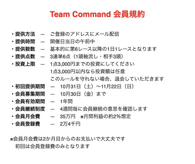 Team command概要