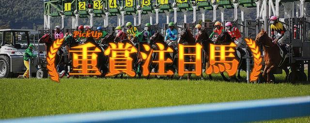 ターフビジョン重賞注目馬