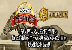 アルカナム(ARCANUM)画像