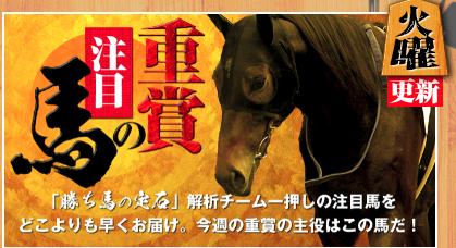勝ち馬の定石コンテンツ2